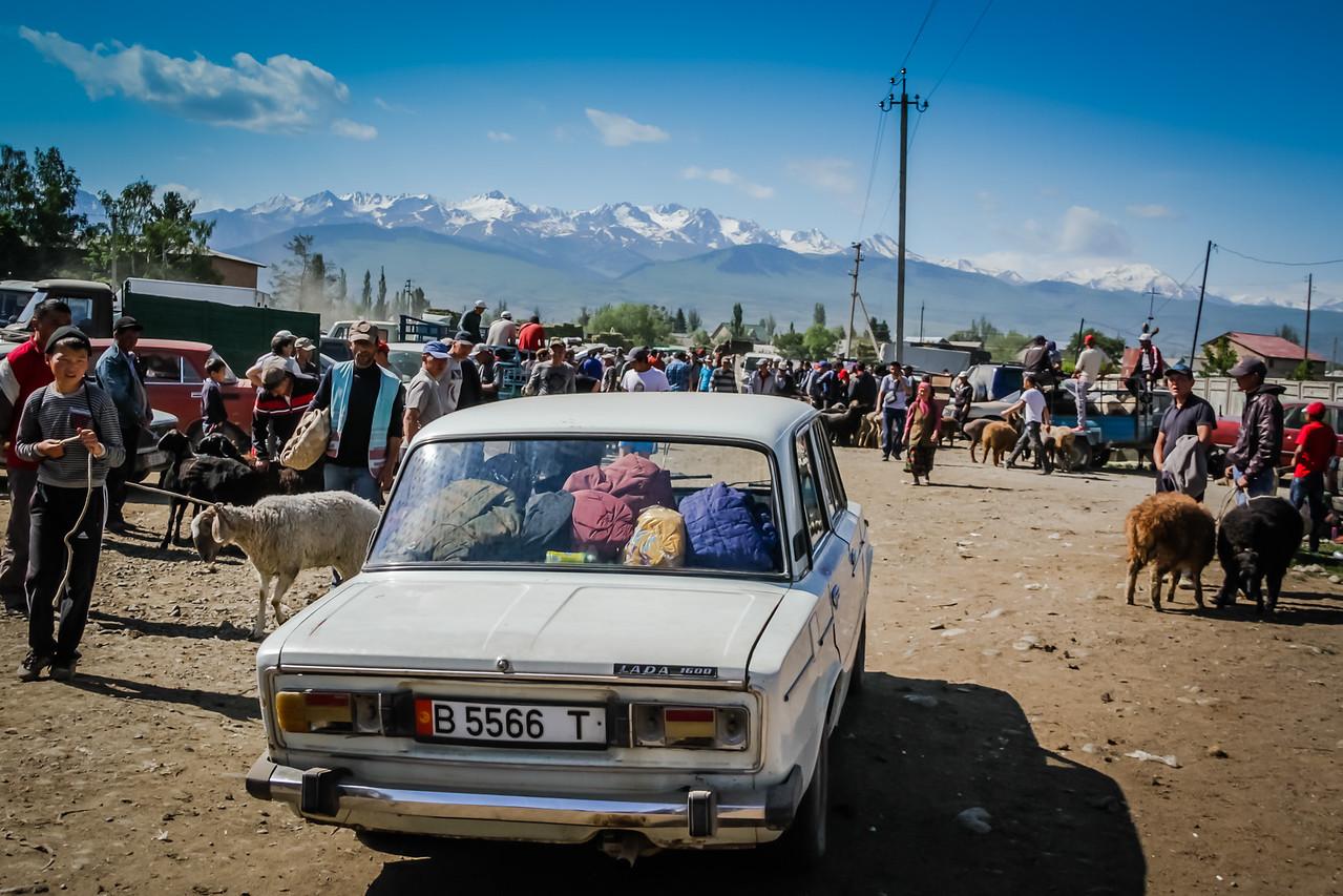 Karakol Animal Market, Kyrgzystan